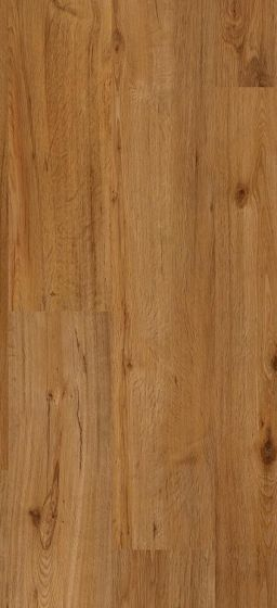 Coretec Plus Greenwich Birch CP509 Luxury Vinyl Laminate Flooring